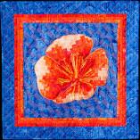 Orange bargello poppy on a blue background